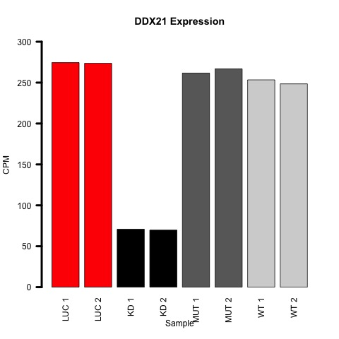 figures/ddx21_expression_cpm.jpg