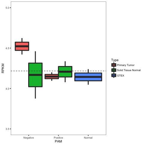 figures/DDX21_breast_correlation_ER_TYPE_boxplot.jpg