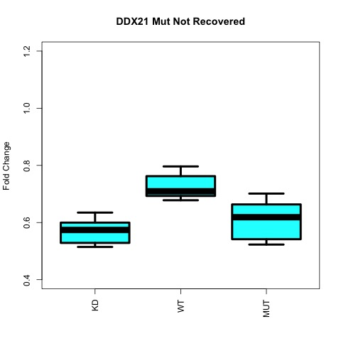 figures/boxplot_ddx21_down_regulated_not_recovered_genes.jpg